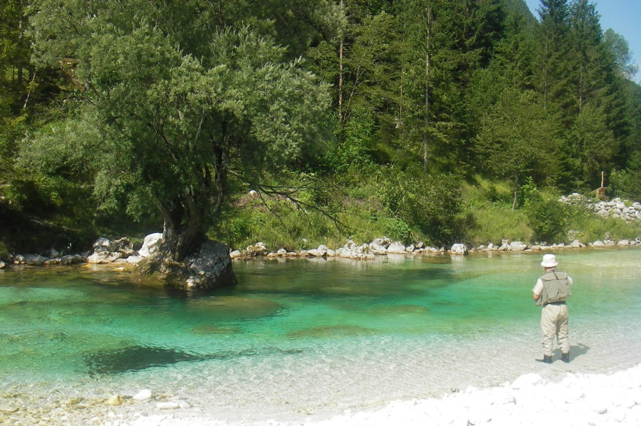 Go fishing worldwide for Best time to go saltwater fishing
